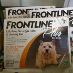 Frontline Dogs 0-22 lb